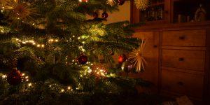 Weihnachtsbaum (Foto: Alexander Mendle)